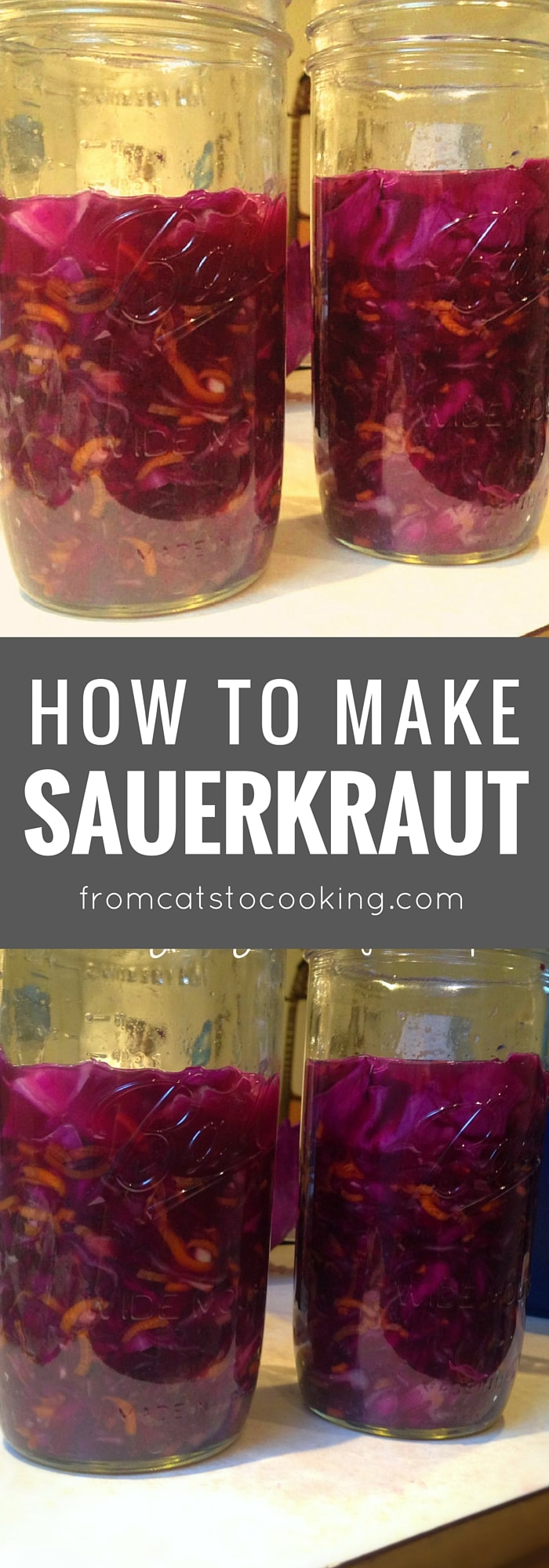 How to Make Sauerkraut - an easy recipe for this tasty condiment and side dish that's full of healthy probiotics. Click through to get the recipe or save this pin for later.