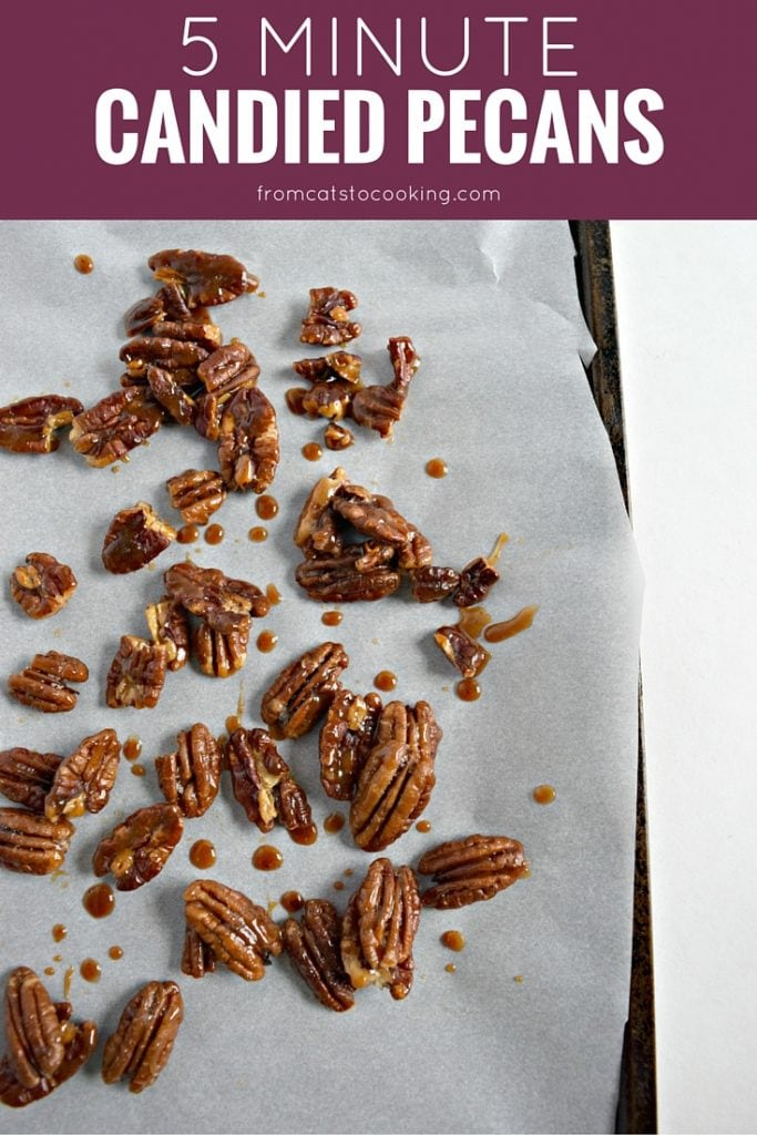 5 Minute Candied Pecans - Tasty, quick and easy candied pecans that can be eaten as a snack, used to top salads or even on dessert! // isabeleats.com