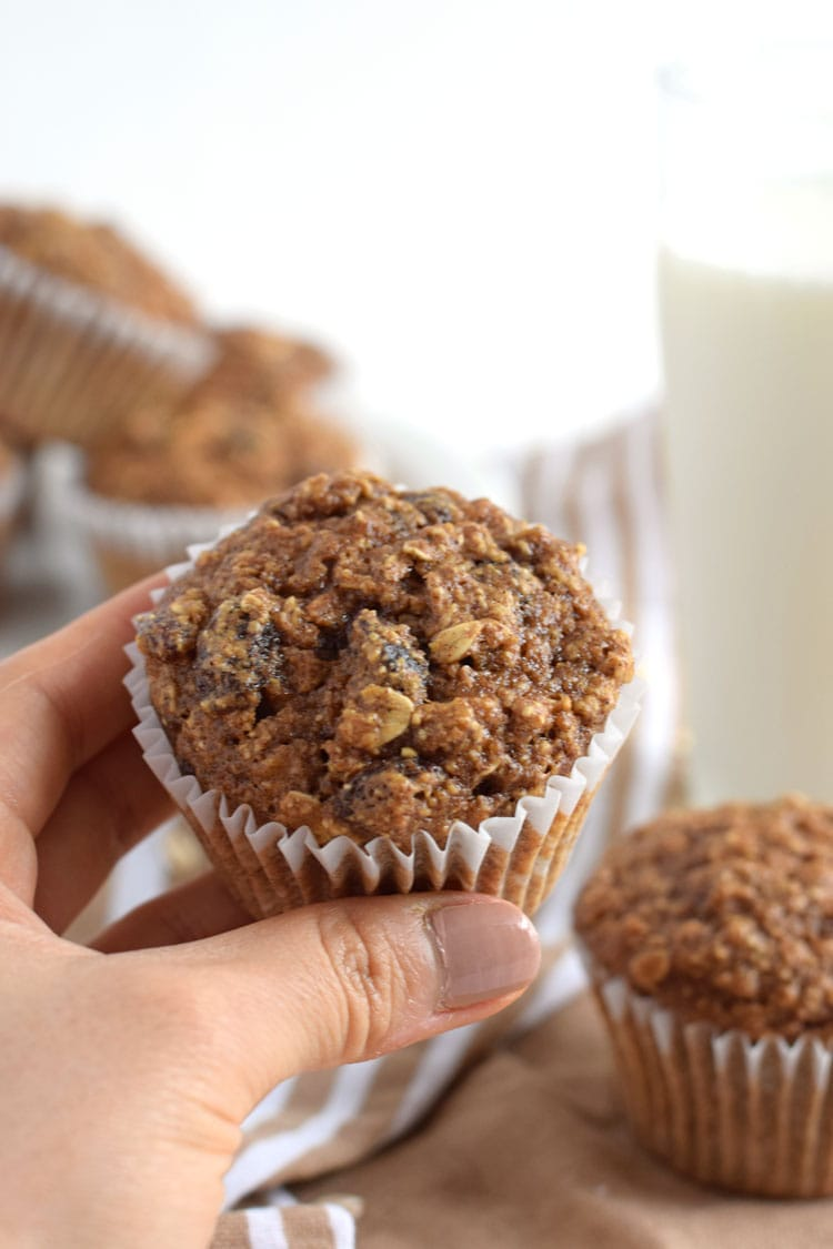 Made with rolled oats, raisins, unsweetened applesauce and almond butter, these Gluten Free Oatmeal Raisin Muffins are ready in only 30 minutes and are the perfect after-dinner dessert or brunch pastry. // isabeleats.com